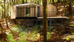 cabane d'entre les arbres